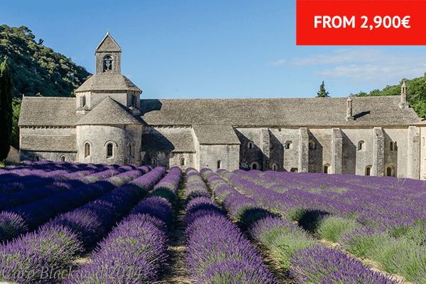 Food & Wine Tour of Provence - France Food Tours