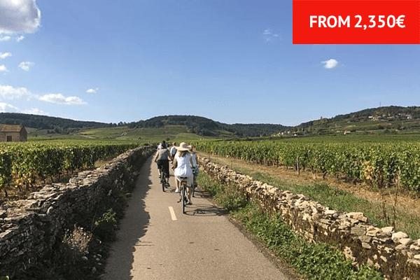 Burgundy - 19th September - 26th September 2020