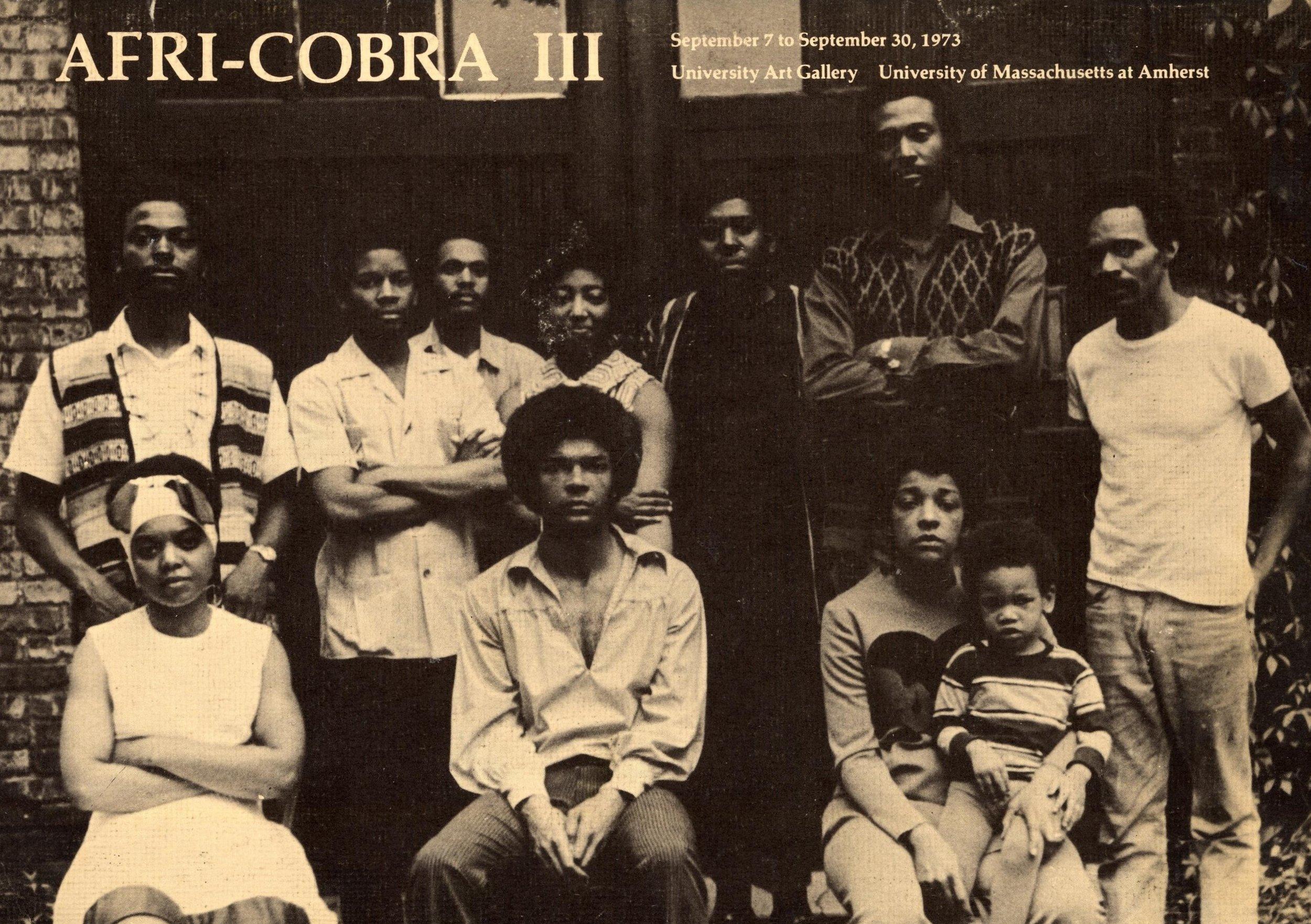 Afri-Cobra III.jpg
