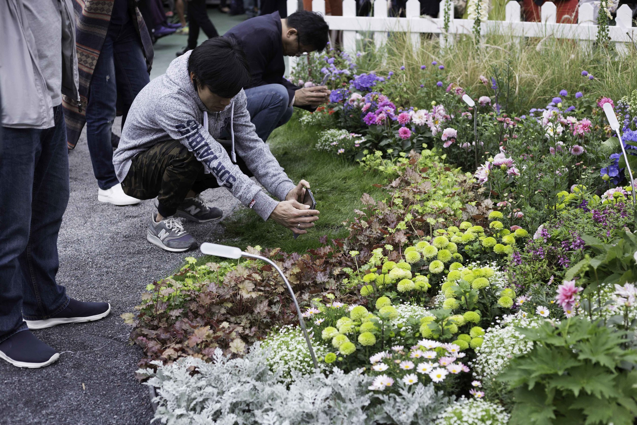 flowershow_small_s10.jpg