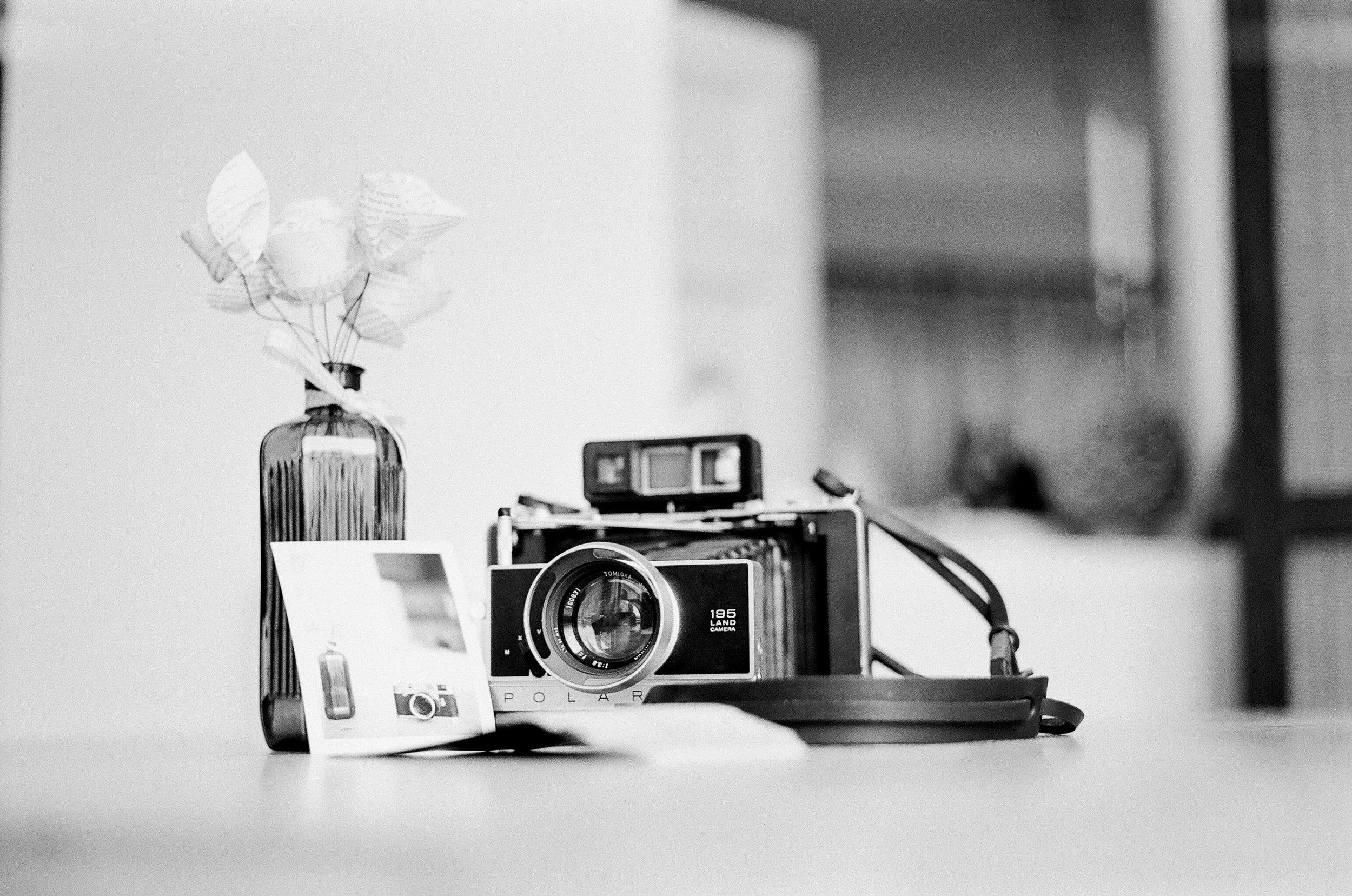Kodak Portra - 20131022-01408.jpg