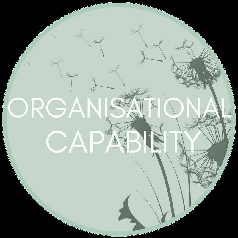 Organisational Capability