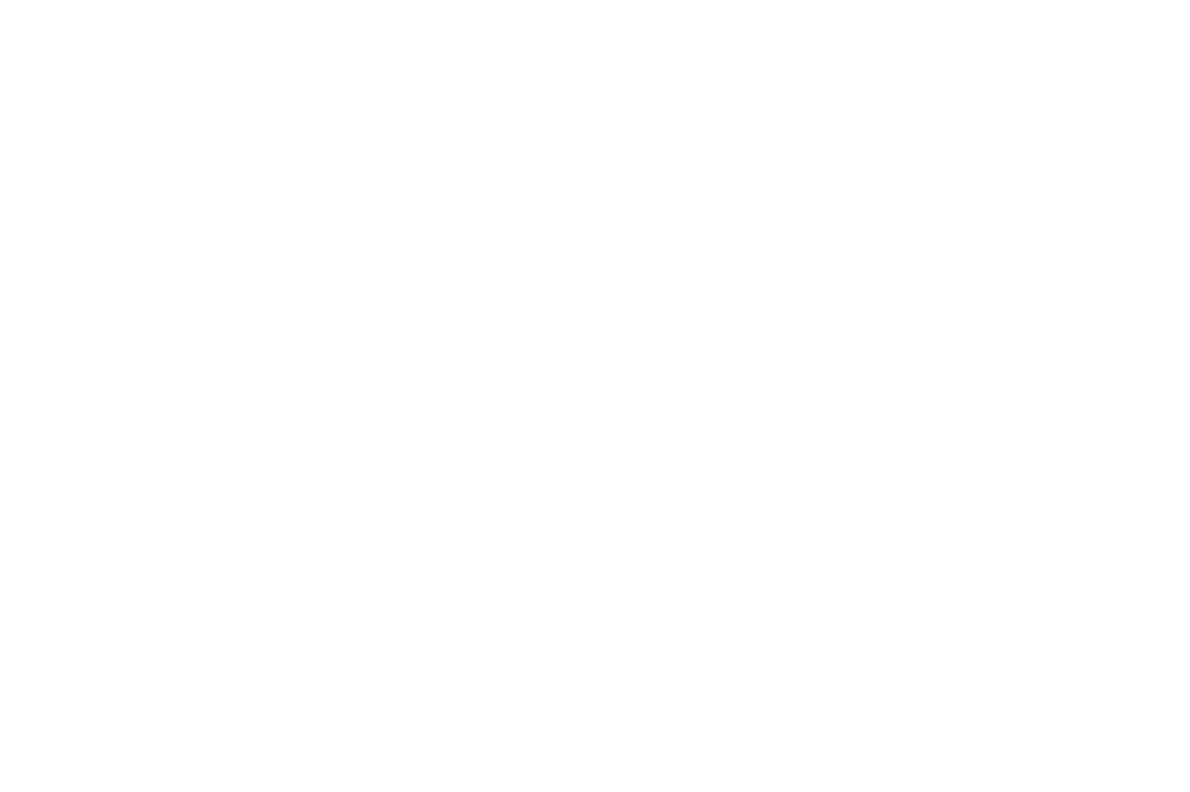 WEFF-OfficialSelection-2019-White.png