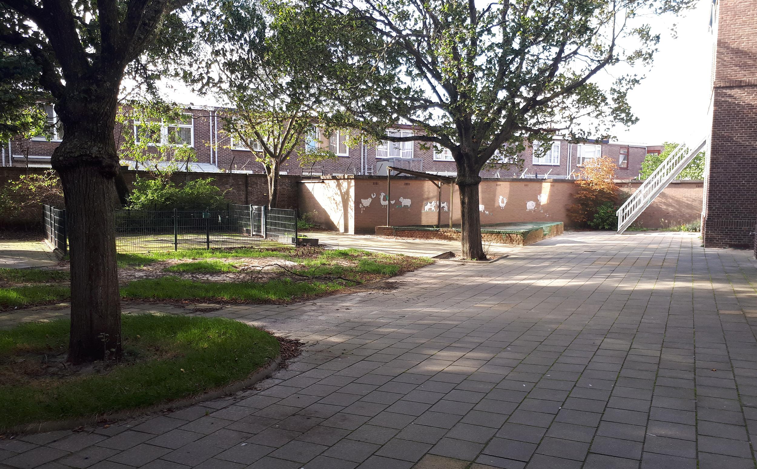 ZZ04 - Zeezwaluwstraat 4.jpg