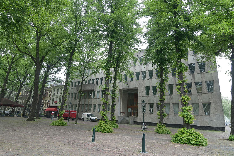 LangeVoorhout102(1).jpg