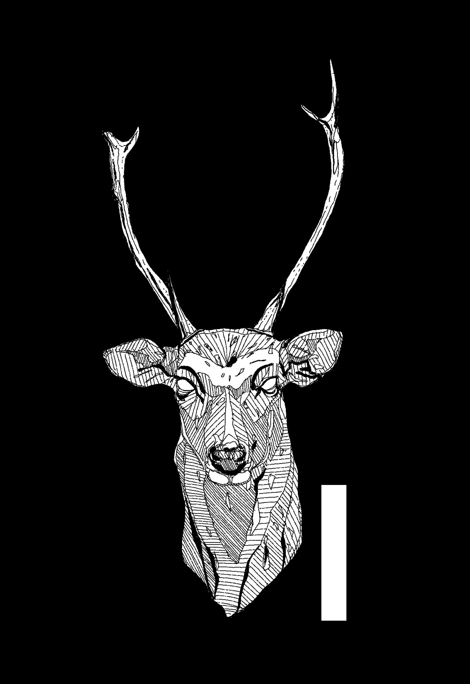 Deer_Narrow.png