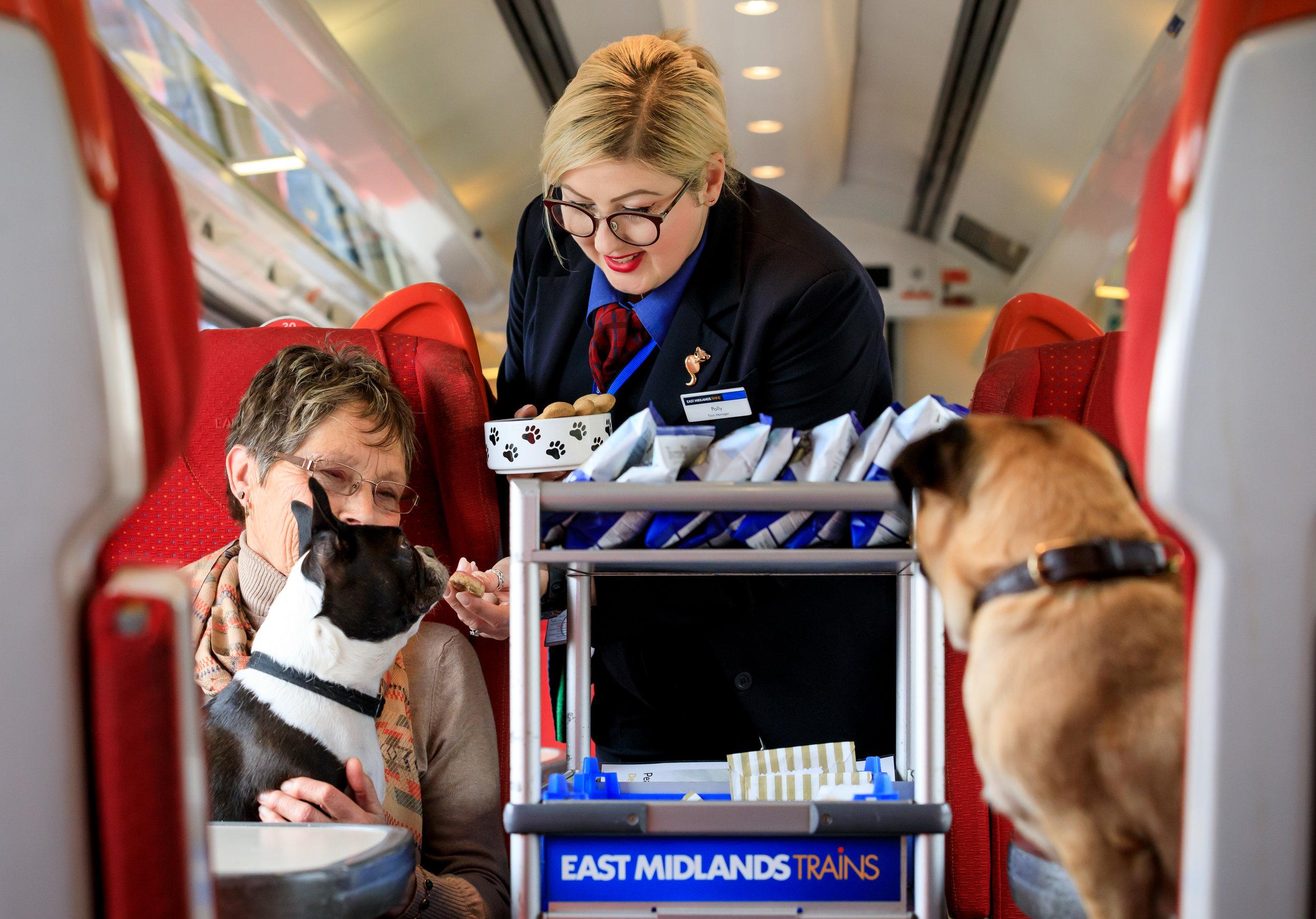 East Midlands Trains 4 .jpg