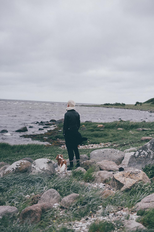 Vacation_Denmark.jpg