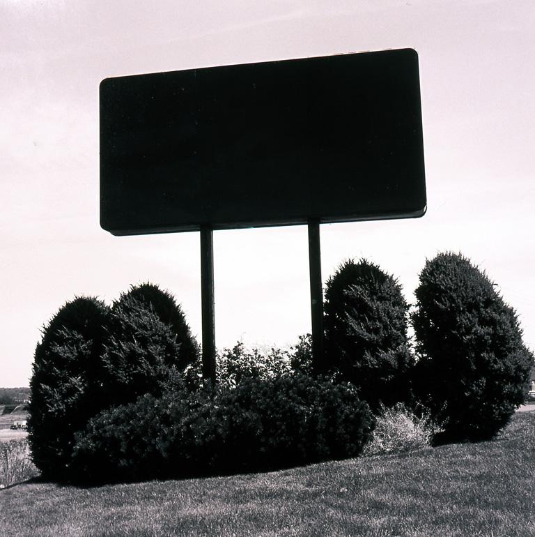 "Black and Cedars,  2004, 44"" x 44"""
