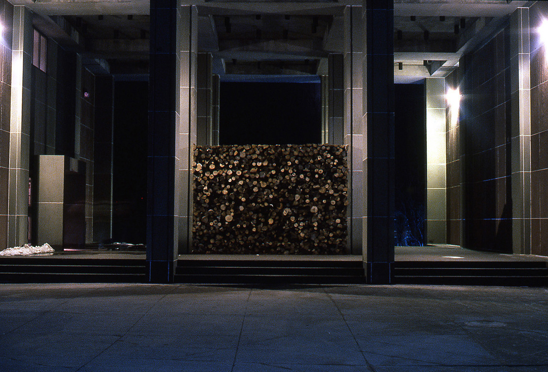 13. a winter's wood (night).jpg
