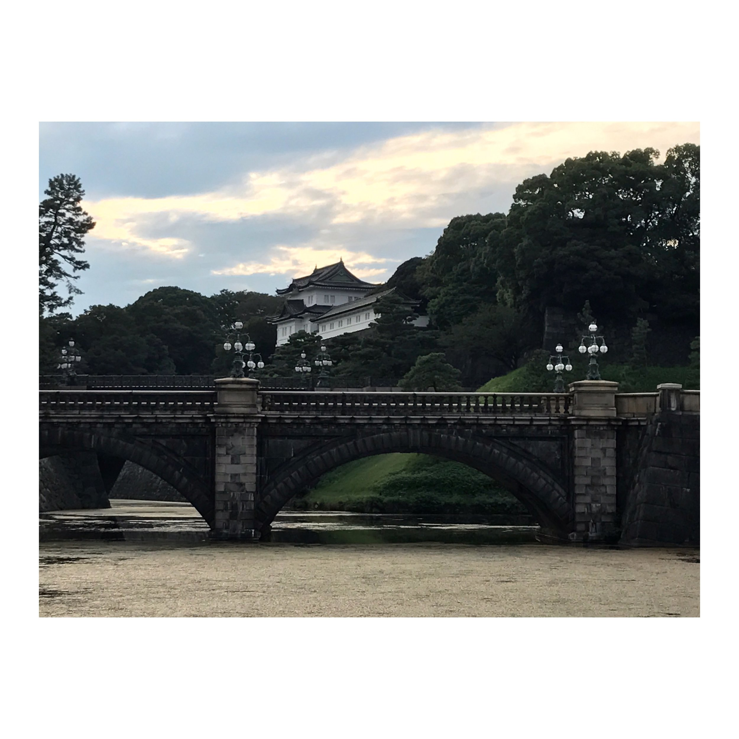 view bridge.JPG