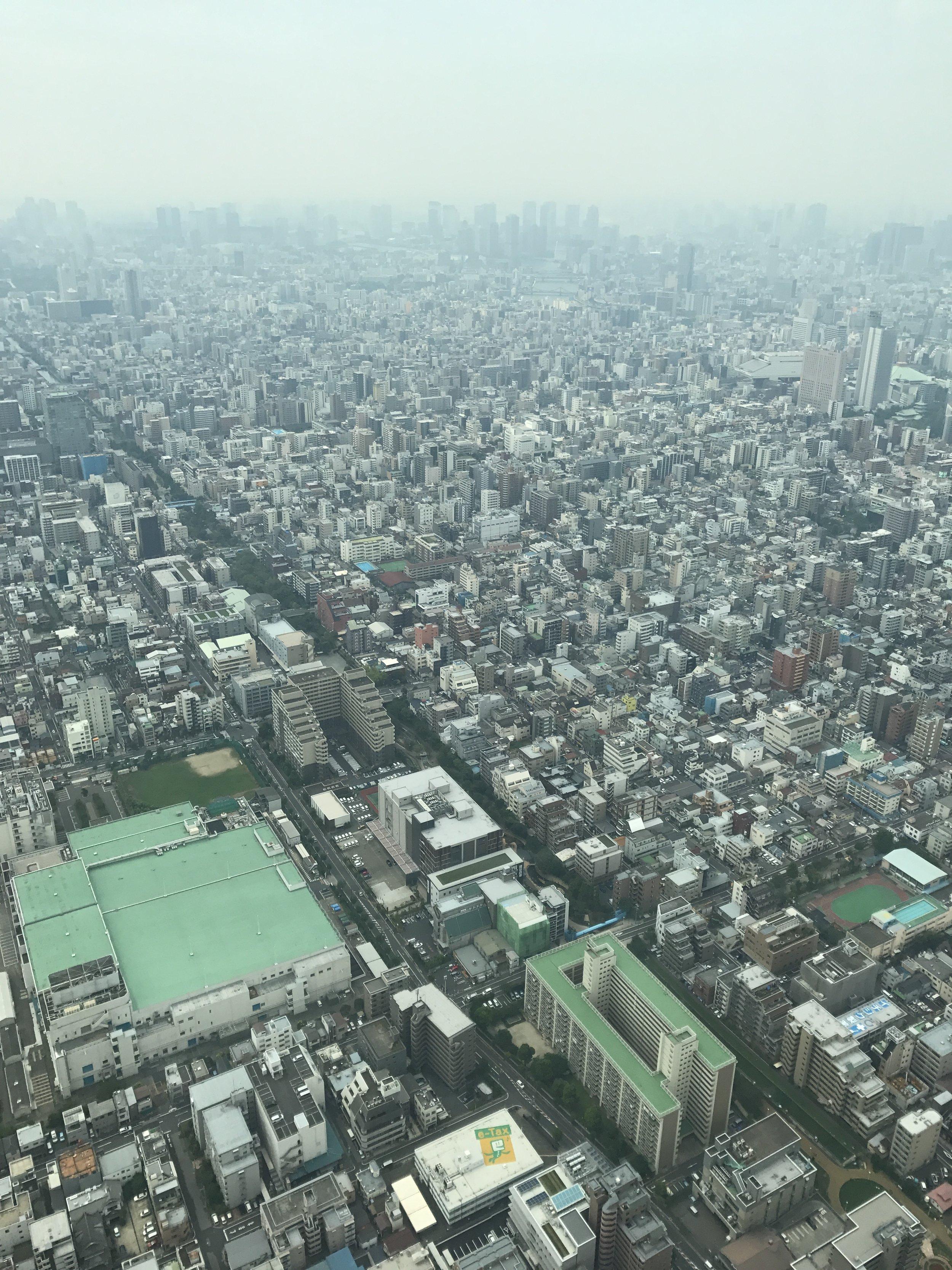 tower view.JPG