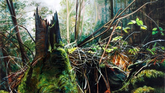 Georgia Dodson,  Forest Floor (Clearing),  2012,   Oil on copper and oak panel