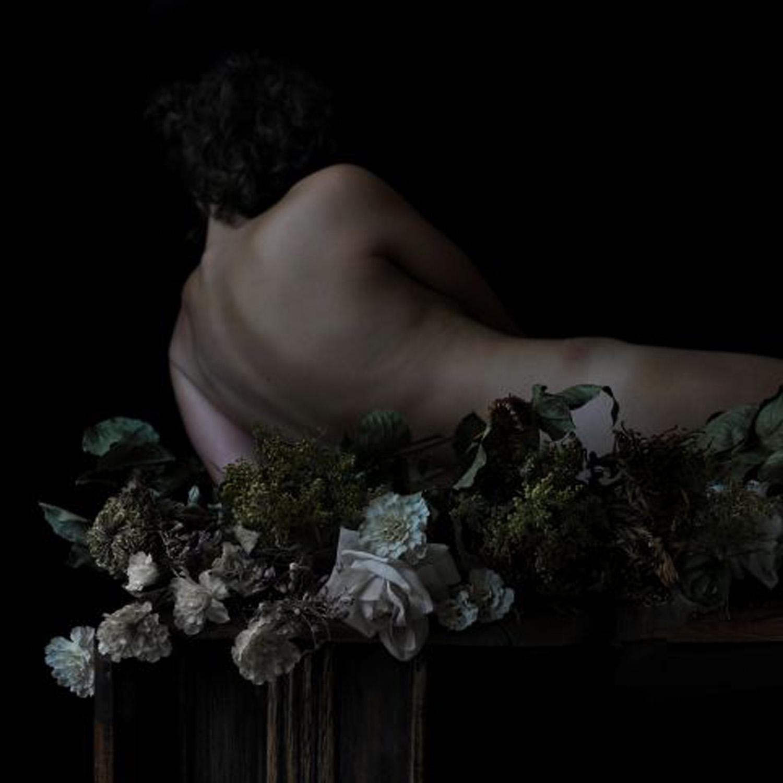 Sophie Harris-Taylor