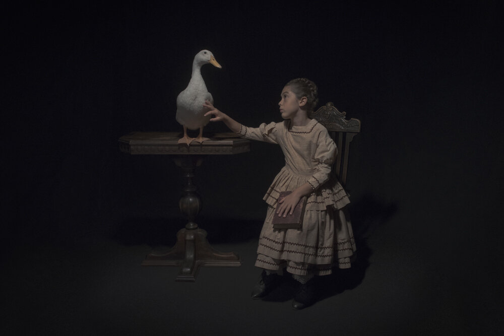Tami Bahat,  The Waterfowl , 2017, Framed Archival Pigment Print