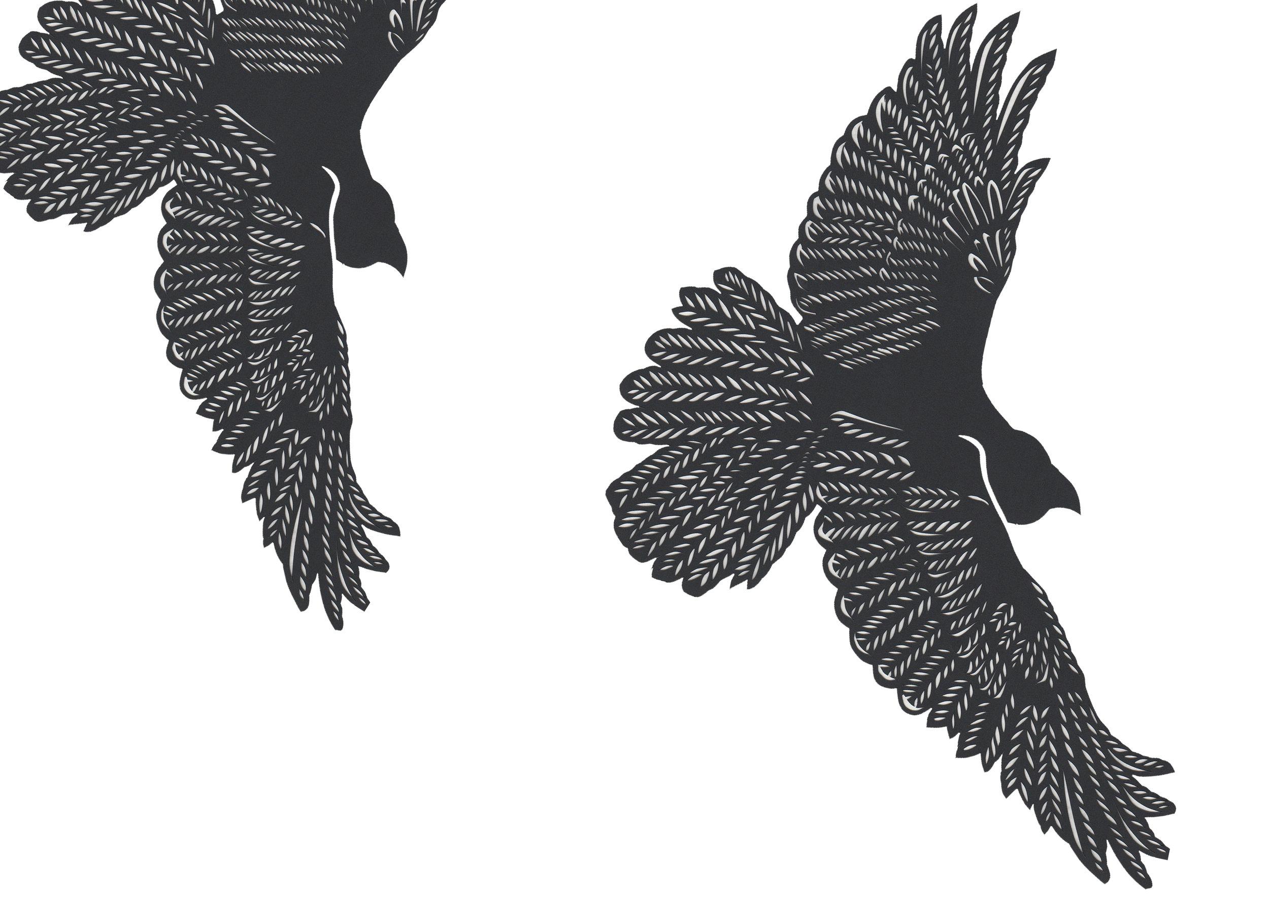 Lesley Clements - Illustrator