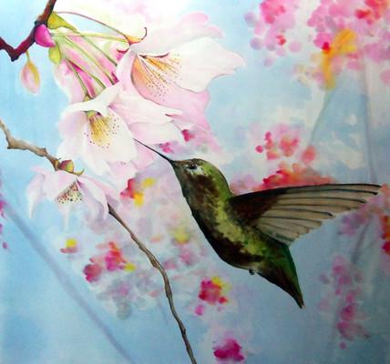 """""""Hummingbird Spring"""""""