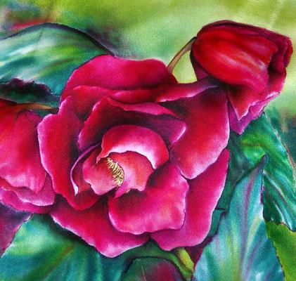 """""""Red Begonia"""""""