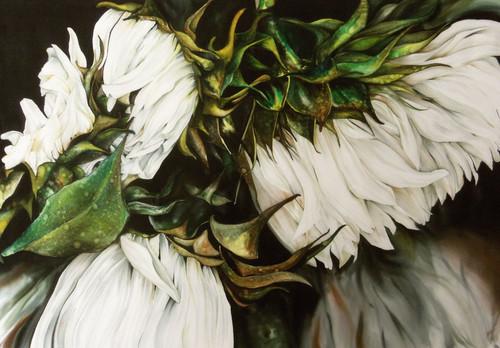 """Swan Song"""