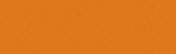 604 Burnt Orange