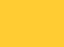 010 Golden Yellow