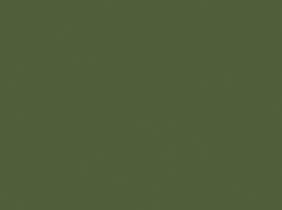 105 Olive Green