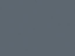 211 Neutral Grey*