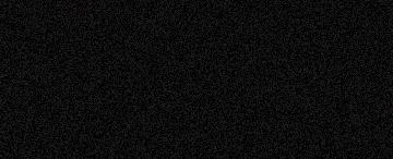 881 Black