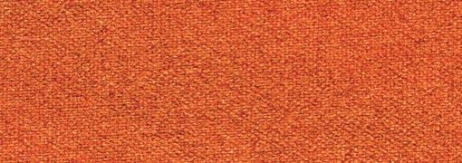 543 Burnt Orange