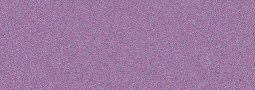 557 Halo Violet Gold