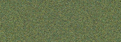 562 Metallic Olive Green