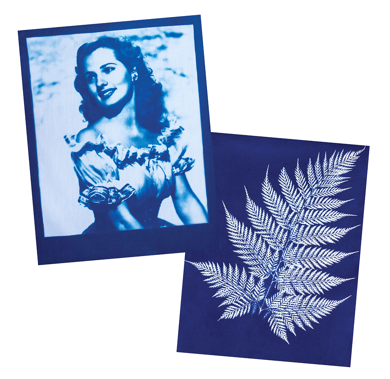Cyanotype-lady-fern.jpg