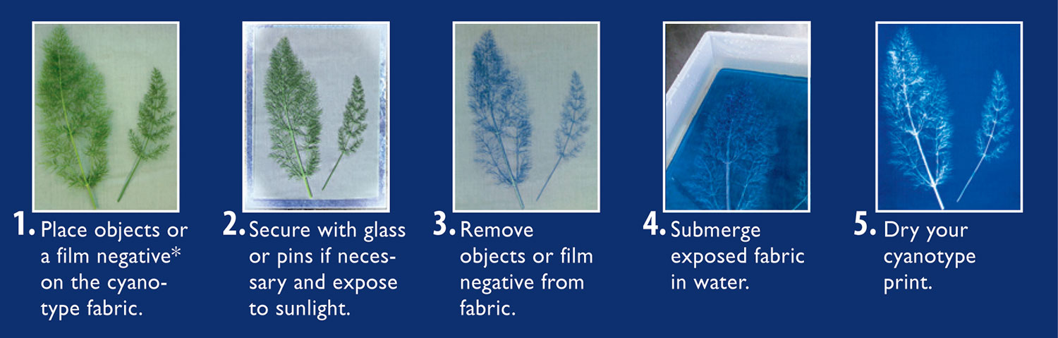 Cyanotype-sequence-graphic.jpg