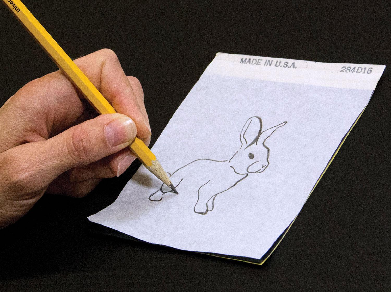 Bunny-Step-1-Draw-on-Paper.jpg