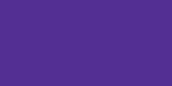 Copy of Copy of *013 Passion Purple