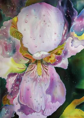 """""""Iris"""" by Natasha Foucault @natashafoucault"""