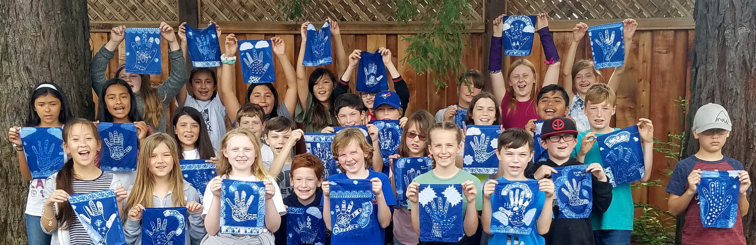 Gallery of Cyanotype Zendoodling artwork from student projects