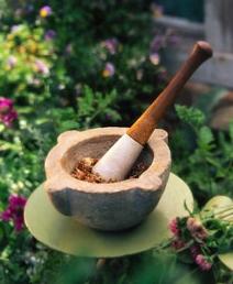 herbal medicine morter & pestle