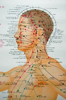 Acupuncture anatomy of head showing points to treat neck pain, headaches, rotator cuff injuries.