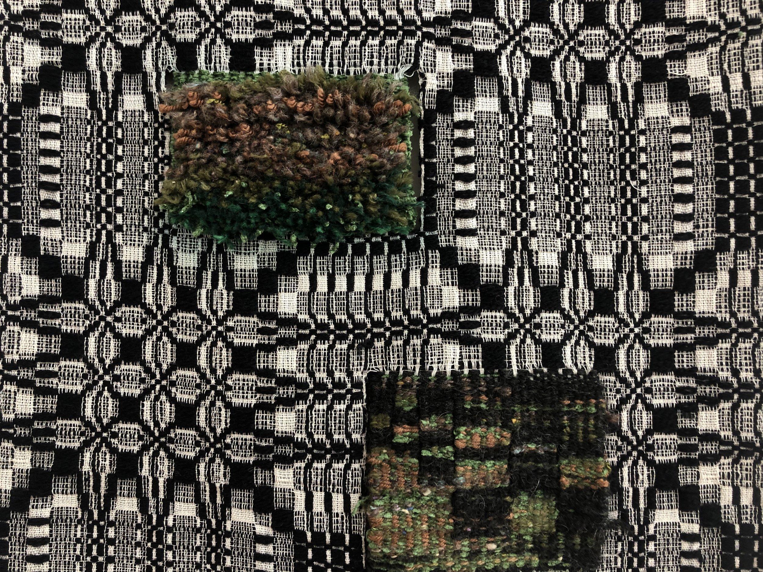 Pine Cone Bloom (detail)