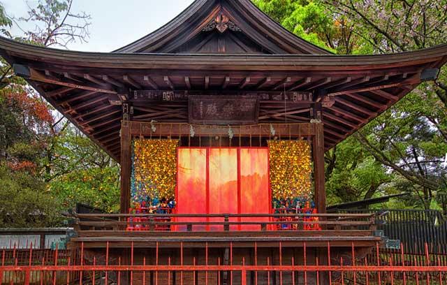 KyotoPeony1_HDR.jpg