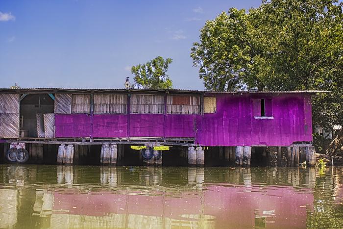 Purple_HDR_DxOcropColE_DxOFinal.jpg