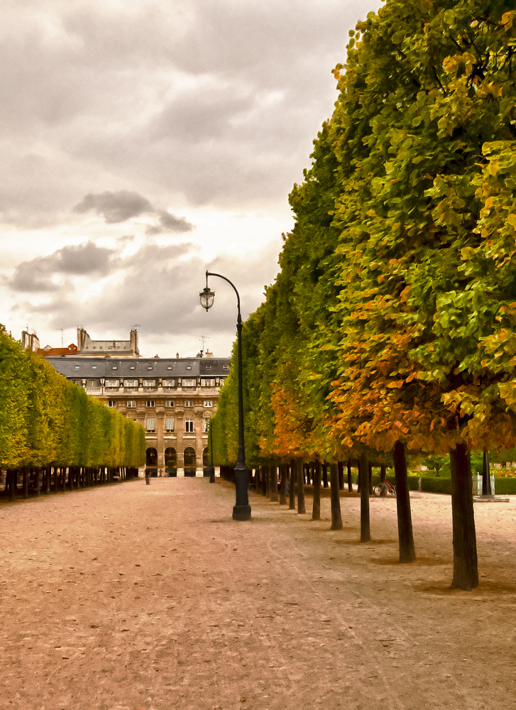 Reamer_4_AllPhotography_Palais-Royale.jpg