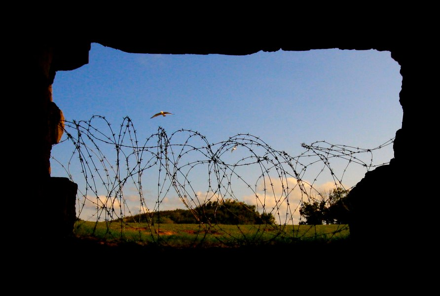 Normandy2008-110-3.jpg