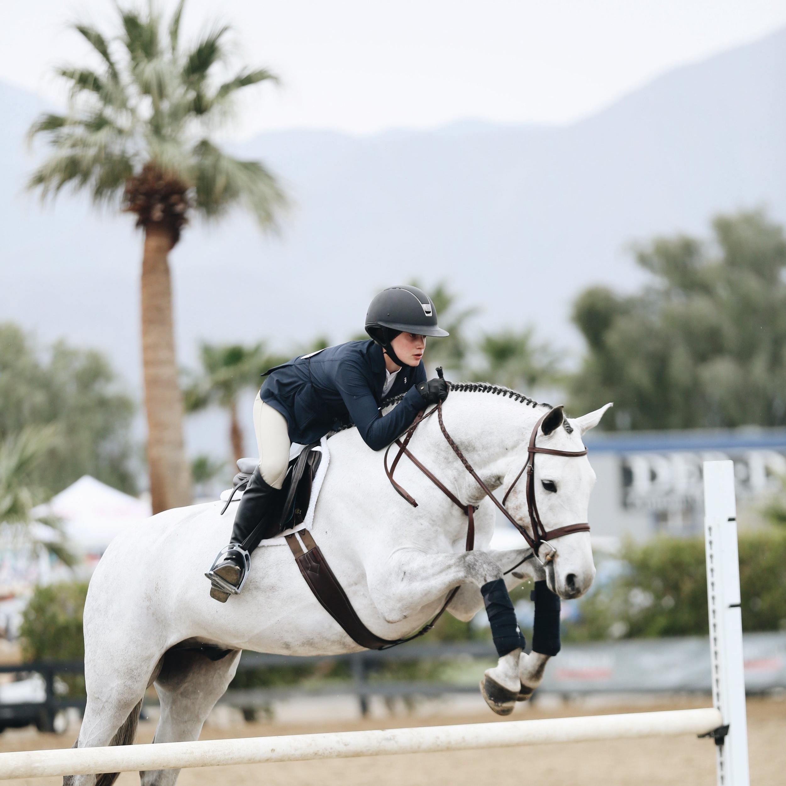 - equestrian