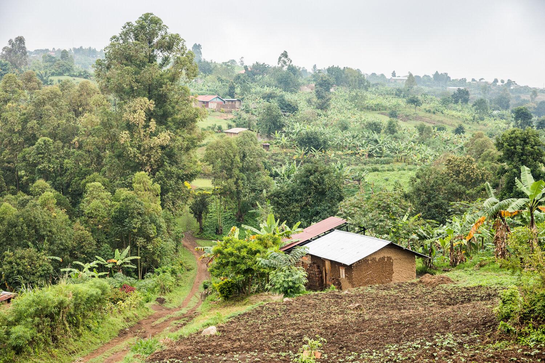 RS3418_HRNS_Uganda_1368.jpg