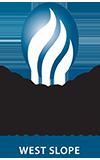 WSCOGA-logoWEB.png
