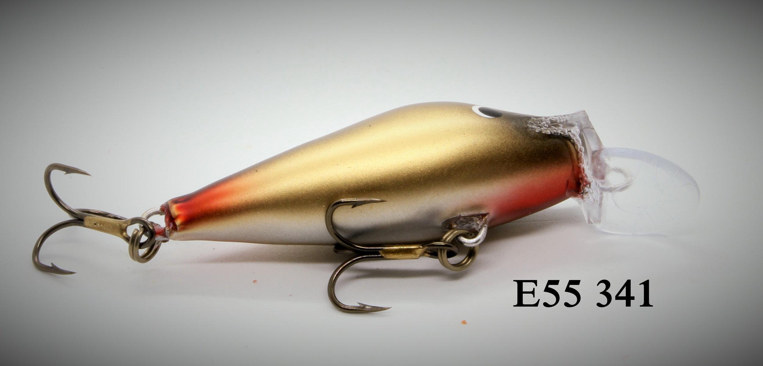 AE55341_1.jpg