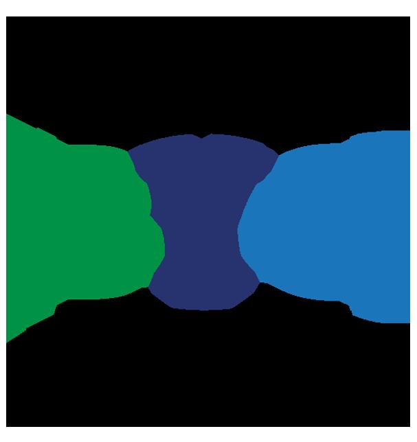 BYOWashington logo.png