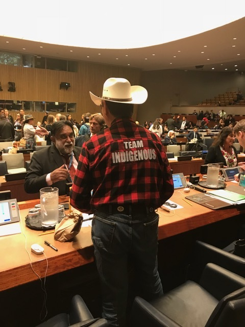 Grand Chief Wilton Littlechild at the United Nations Permanent Forum on Indigenous Issues, 2018